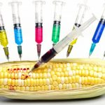 Scientists Against GMO Foods: Hear From Those Who Have Done The Research