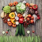 The Hunt Is Over. Discover These Powerful Plant Based Diet Benefits